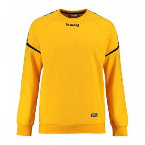 0132987_hummel-authentic-charge-cotton-sweatshirt-003709_625
