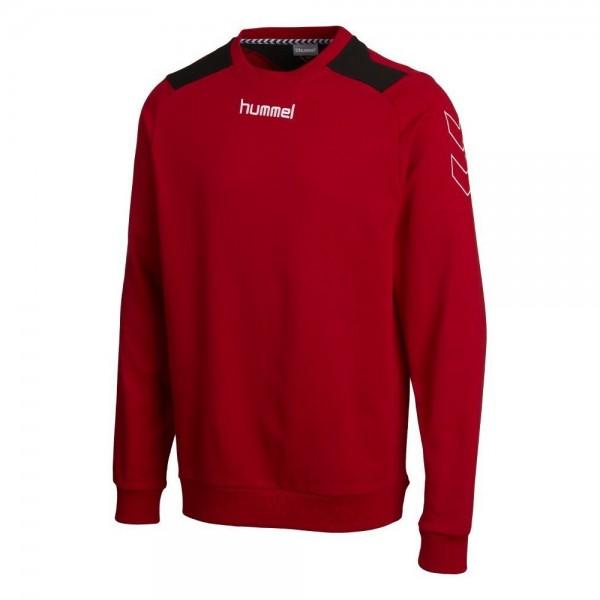 36405-3062_sps_handball