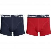 panske-trenky-hmlmars-2pack-boxers-true-